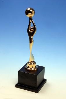 賀本社所使用之水管清洗機 榮獲2010年中華民國第十屆國家品質保證金像獎榮譽